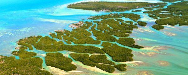 Miami et les Keys : 2 visites incontournables en Floride
